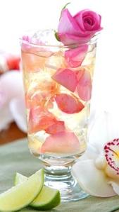 Mojito Rose