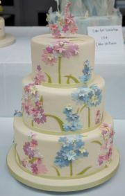 16-CAKE6