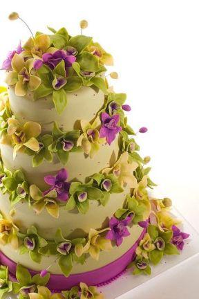 14.CAKE3