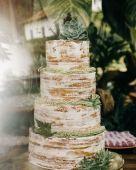 14.CAKE7
